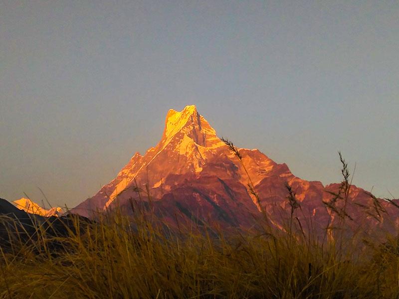 machhapuchhare-kiss-trek-mardi-himal